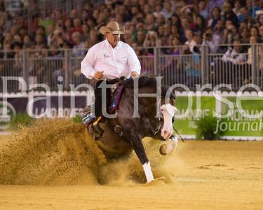 2014 World Equestrian Games