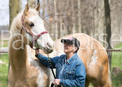 Crull Paint Horses