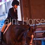 Paint Horse Journal's photo